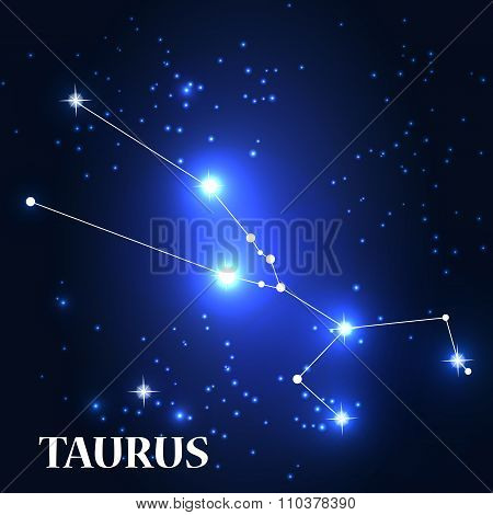Symbol: Taurus Zodiac Sign. Vector Illustration.