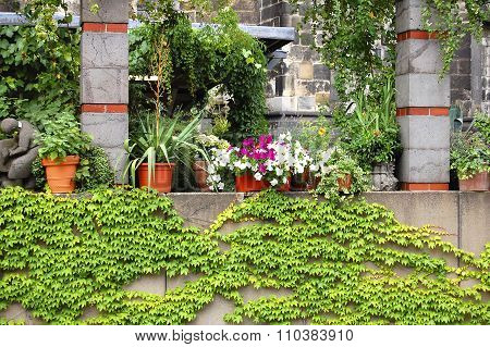 Balcony ful with flower