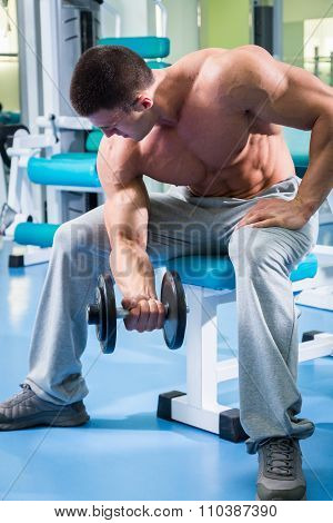 Bodybuilder makes exercise with dumbbells at the gym.