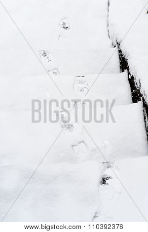 Footprints On The Snowy Ladder In Winter In Russia, Siberia