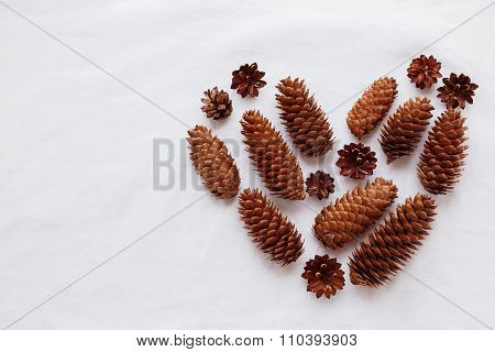 Heart Of Pine Cones And Fir Cones On White Background. Place For Your Text.