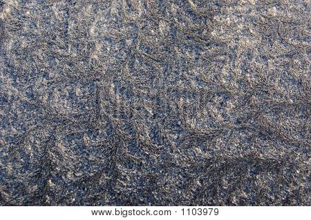 Hoarfrost On A Dark Blue