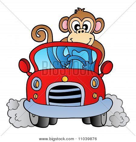 Affe im Auto