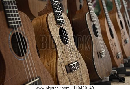 Row Of Ukuleles.