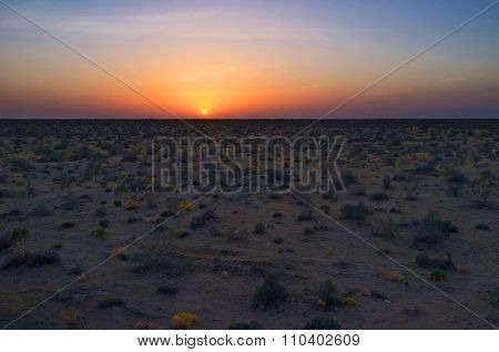 The Evening In Desert