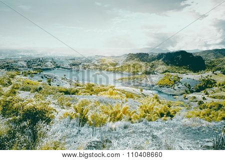 Infrared landscape on a summer day