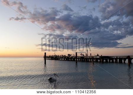 Indian Ocean Sunset: Pelican and Jetty