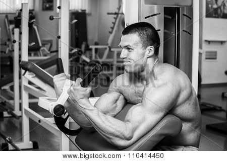 Muscular man in the gym. Work on the arm muscles
