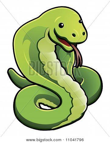 Cobra cobra bonito