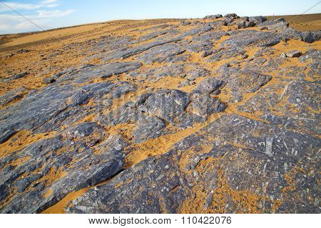 Old Fossil In  The Desert Of Morocco Sahara   Stone Sky