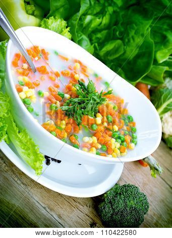Vegetable soup with fresh organic vegetables