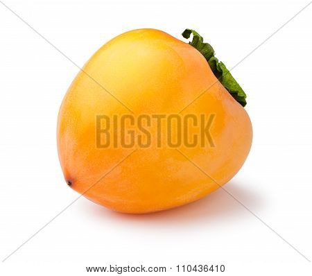 Whole Persimmon Isolated