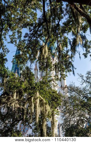 Church Steeples Through Spanish Moss