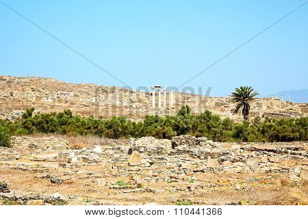 Archeology  In Delos Greece T Historycal   And Old    Site