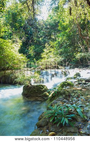 Headwaters, The River In Tropical Forests