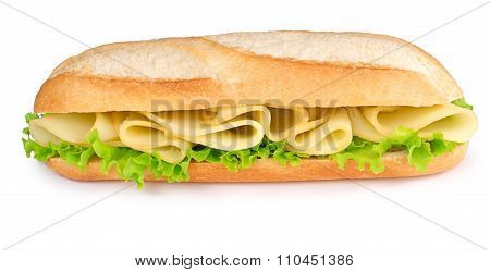 cheese and lettuce sub