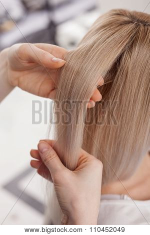 Professional hairstylist is working at beauty salon