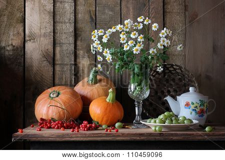 Still Life With Camomiles, Pumpkin And Berries