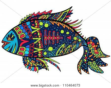 Fish Zentangle Abstract Colorful
