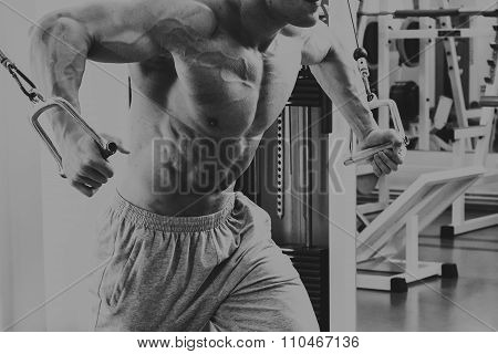 Training in the hall. Muscular man working out with weights in gym.