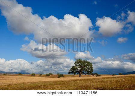 Rural Afternoon Clouds