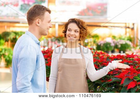Florist demonstrating different flower breeds.