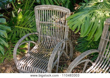 Old Cane Garden Chairs