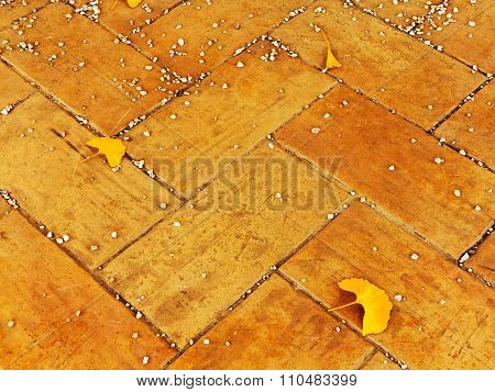 Background Group Autumn Yellow Leaves On A Sidewalk Tiles, Selective Focus, As A Background For Your