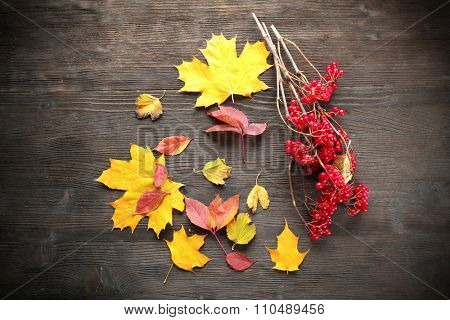 Composition of guelder-rose and autumn leaves on wooden background