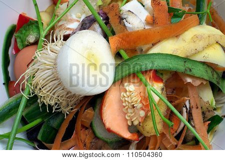 Vegetable Scraps In A White Plastic Bowlbio Bio Waste