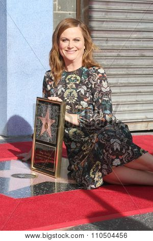 LOS ANGELES - DEC 3:  Amy Poehler at the Amy Poheler Hollywood Walk of Fame Ceremony at the Hollywood Blvf on December 3, 2015 in Los Angeles, CA