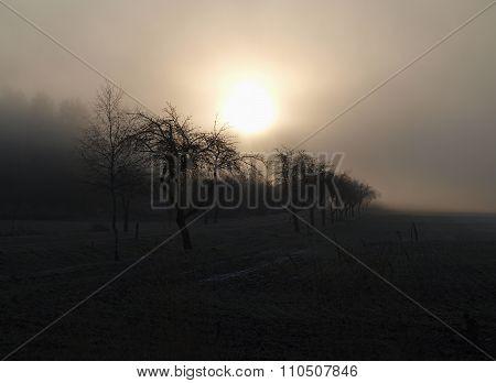 Mystical Sunrise, South Bohemia