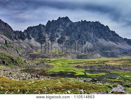 Boggy Tundra In The Siberian Mountains. East Sayan