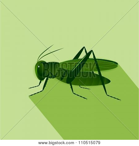 icon insect.