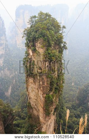 Hallelujah Mountain In Zhangjiajie National Park ( Tian Zhi Shan )