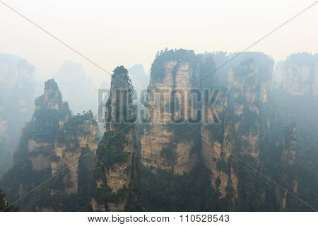 Zhangjiajie National Park ( Tian Zhi Shan ) ( Tianzi Mountain Nature Reserve ) And Fog , China