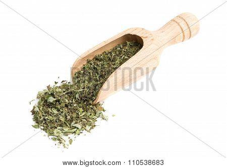 Dried Oregano On Wooden Scoop
