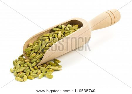 Cardamom Seed Pods In Scoop