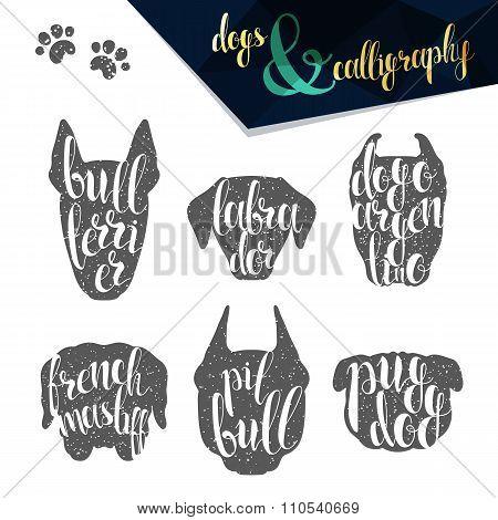 Set names of dog breeds in calligraphy handmade design