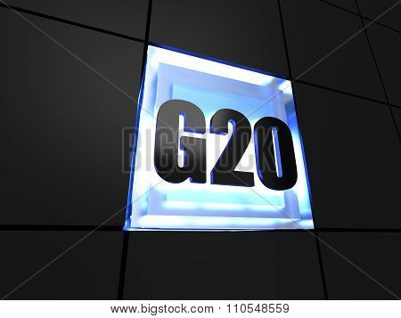 g20 (Group of 20)