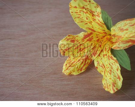 Invented Canna Flower On Wood Background