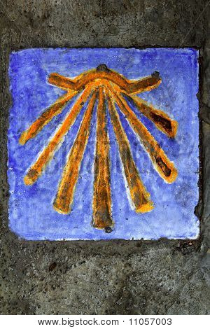 Saint James Way Shell On Ceramic Tile