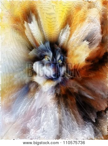 Wolf, color abstract background, multicolor illustration and polygon  effect.