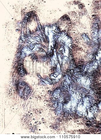 Wolf, color abstract background, multicolor illustration and fractal effect