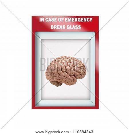 Mock up illustration - Emergency break glass case