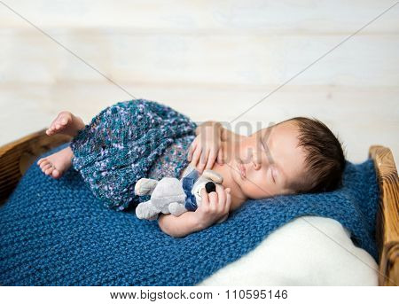 newborn boy sleeping on little cot with toy mouse