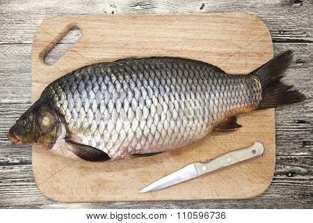 A large fresh carp live fish lying on a wooden board with a knife