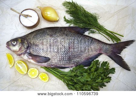 A large live bream river fish  fish lying on  a paper background  with  and slices of lemon and with salt dill.