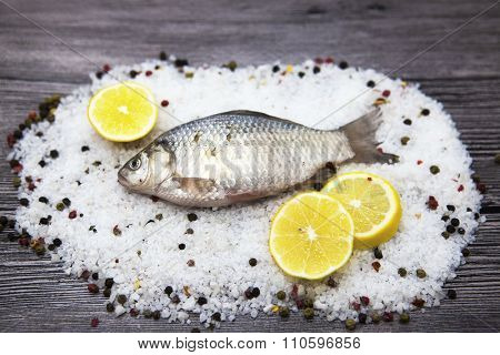 A  fresh carp live fish lying on a on salt and pepper background with slices of lemon and with salt dill. Live fish crucian Carassius auratus gibelio