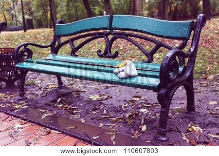 Mittens  and maple  leaf on a park bench